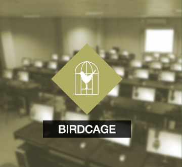 product-birdcage